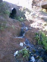 1º Caminata por el arroyo Saladillo