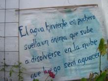 CONSTRUYAMOS UN AMBIENTE SALUDABLE Junio/09 - Mes del Medio Ambiente